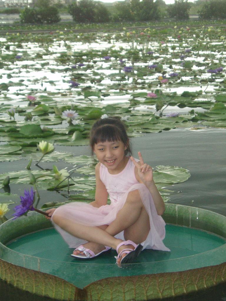 2011-08-16_02_台南白河_蓮緣蓮花池_04_蓮花仙子.jpg