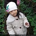 2008-02-03_新竹關西_亞森休閒農場_04