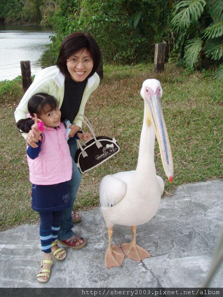 2007-11-25_北埔_綠世界_33