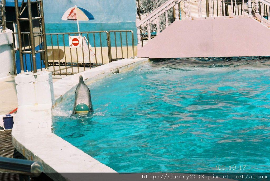 2005-10-17_野柳_海洋世界_02