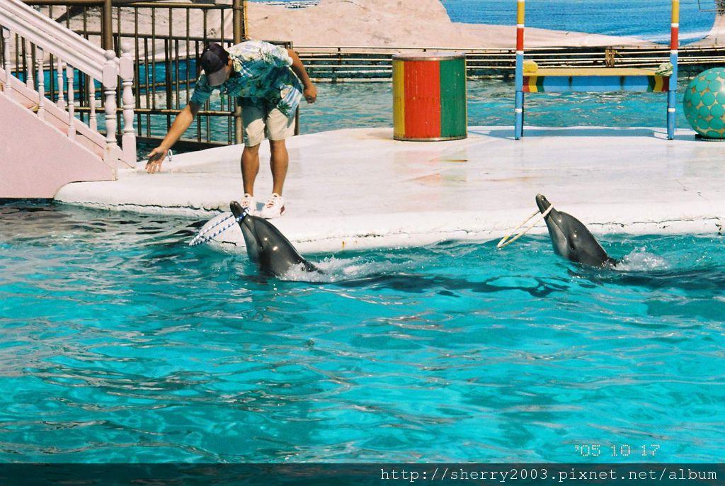 2005-10-17_野柳_海洋世界_04