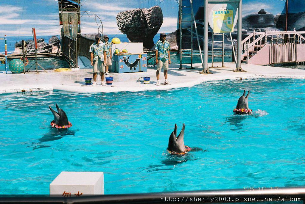 2005-10-17_野柳_海洋世界_05