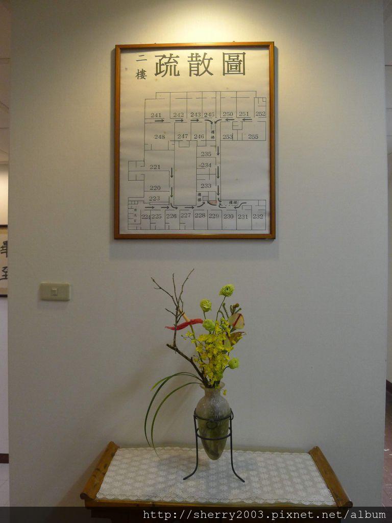 P1130909.JPG