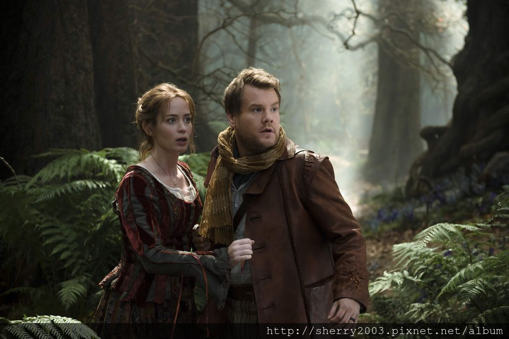 Into the Woods_01.jpg