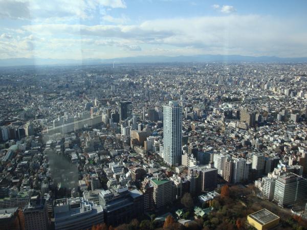 都廳45樓看下去的東京風景