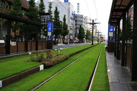 _MG_0115市電的綠化.jpg