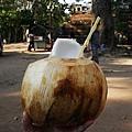 清涼解渴水多多的椰子
