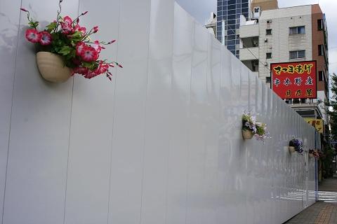 _MG_0110連工程圍牆都有花.jpg