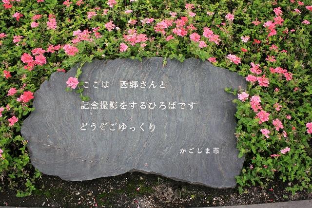 _MG_0304.jpg