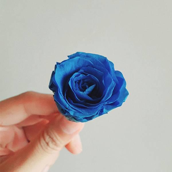 寶藍1.jpg