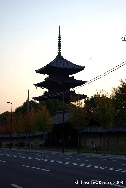 20091127_Kyoto-356_東寺p.JPG