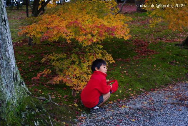 20091125_Kyoto-231_天龍寺.JPG