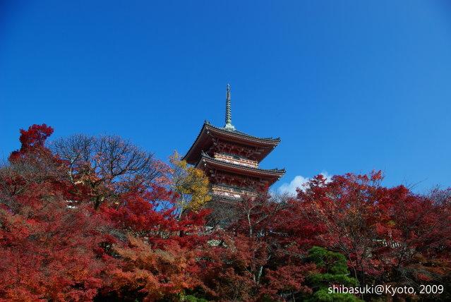 20091126_Kyoto-66_清水寺.JPG