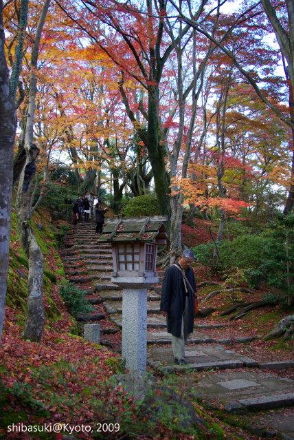 20091125_Kyoto-319_常寂光寺.JPG