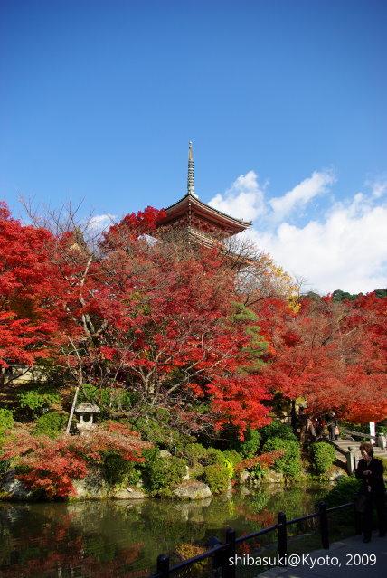 20091126_Kyoto-256_清水寺.JPG