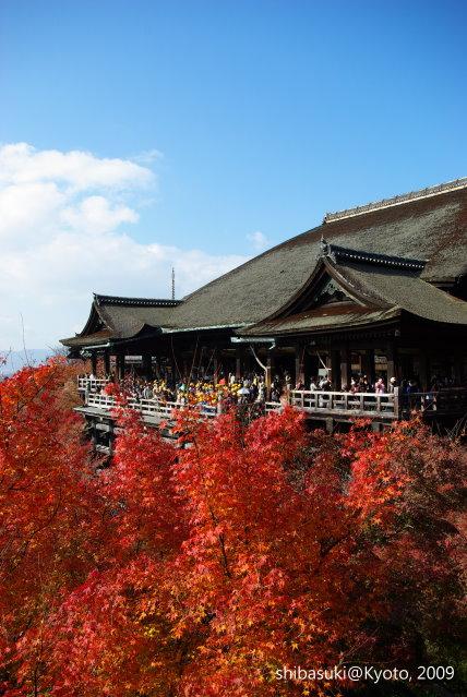 20091126_Kyoto-182_清水寺.JPG