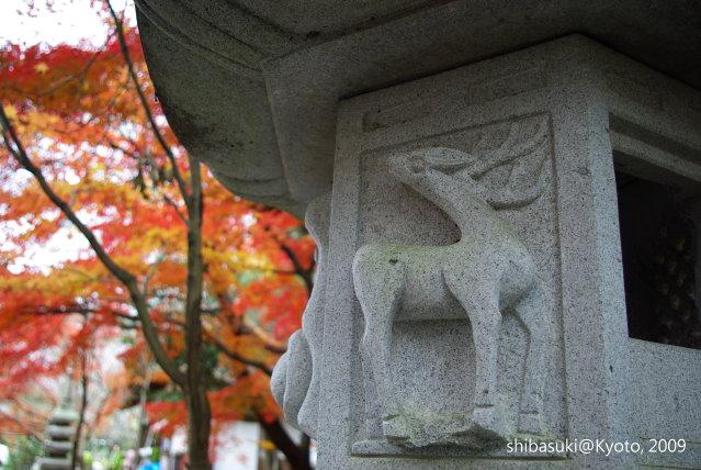 20091128_Kyoto-167_光明寺.JPG
