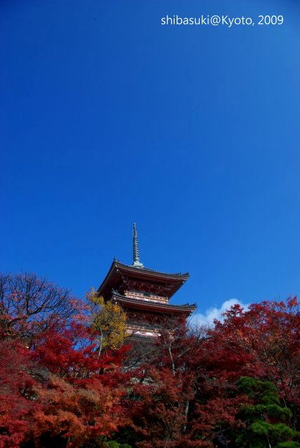 20091126_Kyoto-68_清水寺_1.JPG