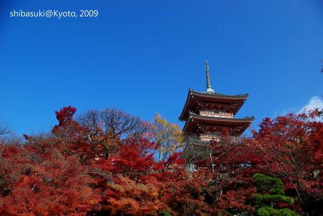20091126_Kyoto-78_清水寺_1.JPG