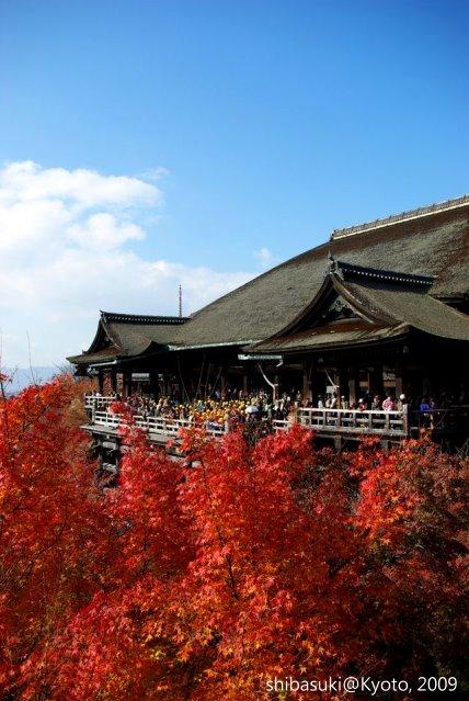 20091126_Kyoto-184_清水寺_1.JPG
