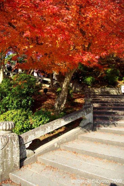 20091126_Kyoto-244_清水寺_1.JPG