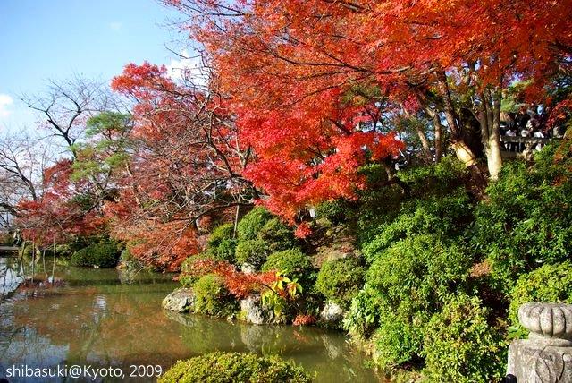 20091126_Kyoto-242_清水寺_1.JPG