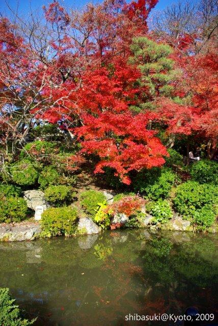 20091126_Kyoto-248_清水寺_1.JPG