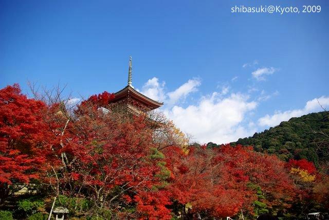 20091126_Kyoto-252_清水寺_1.JPG