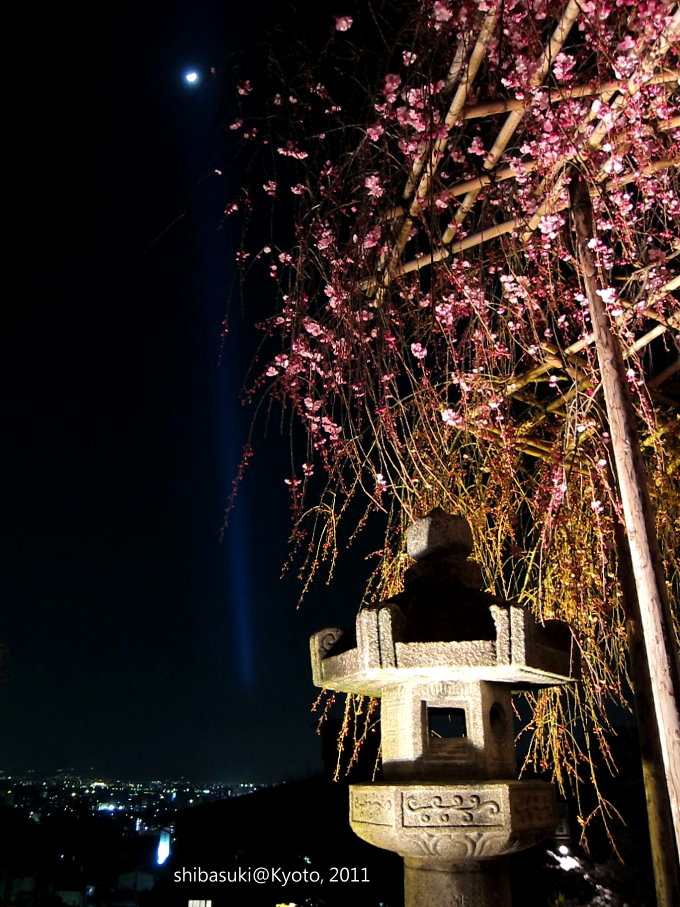 20110410_Kyoto-36_清水寺_1.jpg