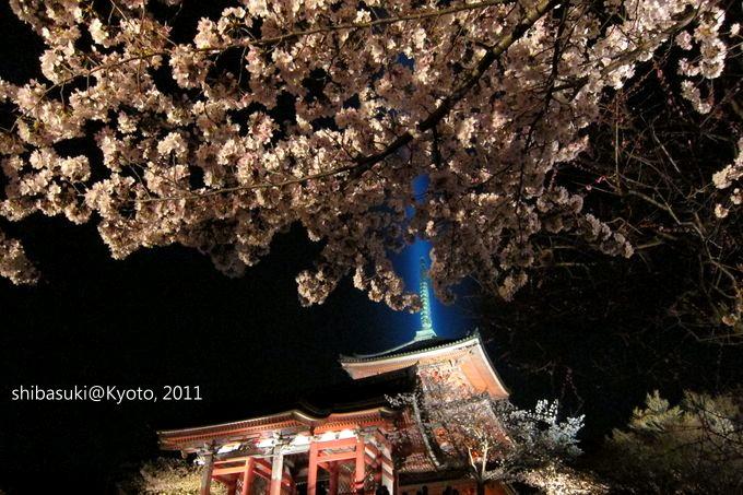 20110410_Kyoto-40_清水寺_1.JPG