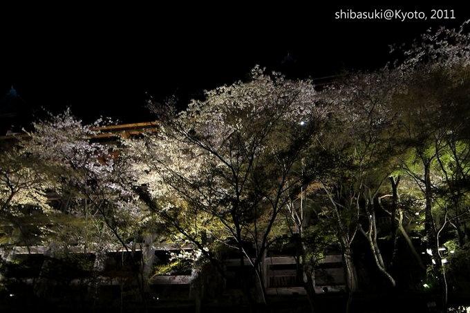 20110410_Kyoto-63_清水寺_1.JPG
