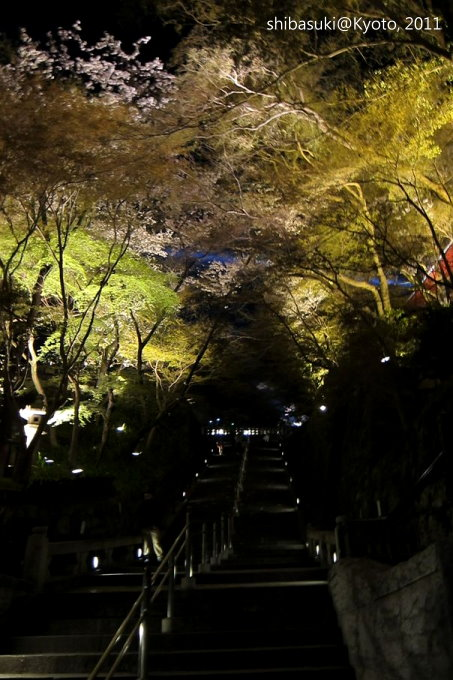 20110410_Kyoto-68_清水寺_1.JPG