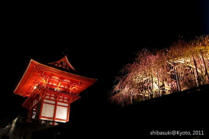 20110410_Kyoto-94_清水寺_1.JPG