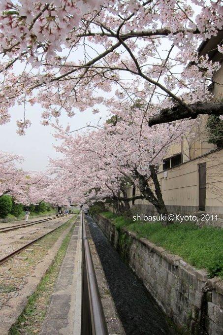 20110411_Kyoto-44_就上鐵道_1.JPG