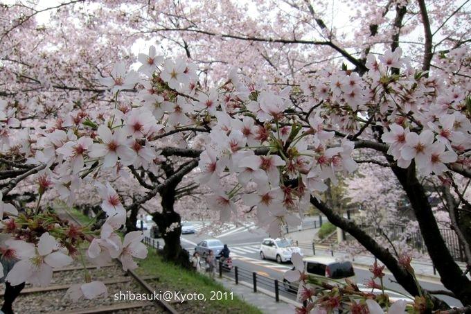20110411_Kyoto-48_就上鐵道_1.JPG