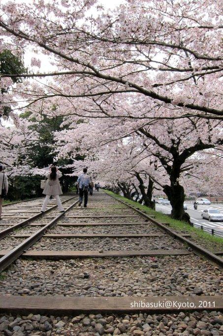 20110411_Kyoto-50_就上鐵道_1.JPG