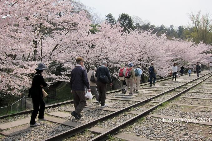 20110411_Kyoto-58_就上鐵道_1.JPG