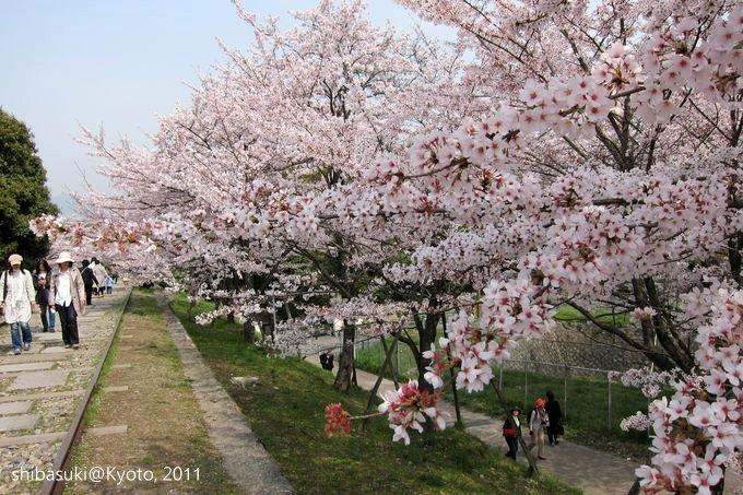 20110411_Kyoto-59_就上鐵道_1.JPG