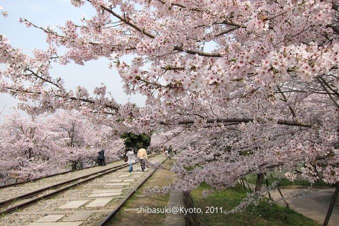 20110411_Kyoto-65_就上鐵道_1.JPG