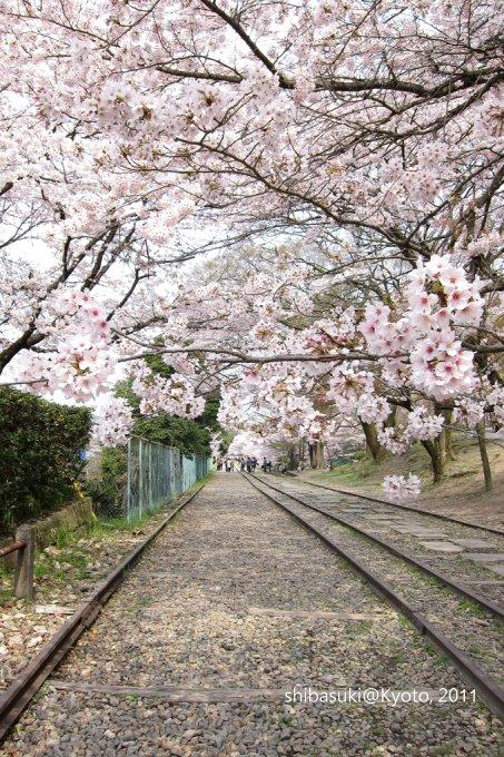 20110411_Kyoto-92_就上鐵道_1.JPG