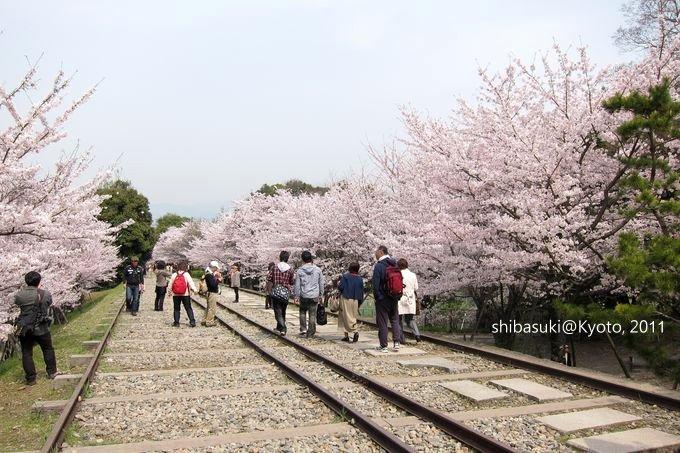 20110411_Kyoto-93_就上鐵道_1.JPG