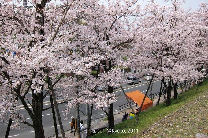 20110411_Kyoto-95_就上鐵道_1.JPG