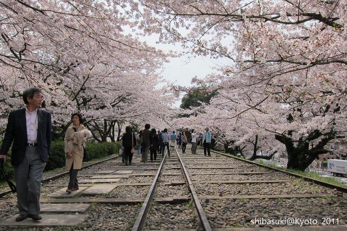 20110411_Kyoto-102_就上鐵道_1.JPG