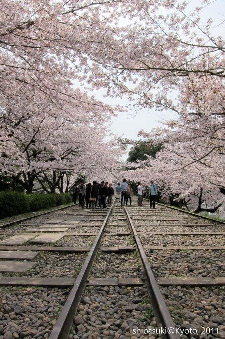 20110411_Kyoto-103_就上鐵道_1.JPG