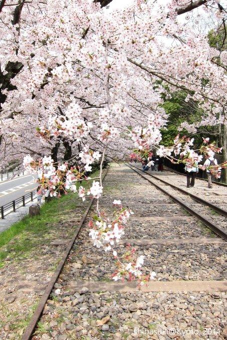 20110411_Kyoto-107_就上鐵道_1.JPG