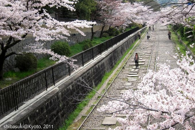 20110411_Kyoto-116_就上鐵道_1.JPG