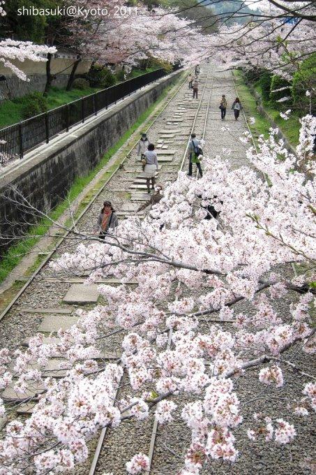 20110411_Kyoto-119_就上鐵道_1.JPG