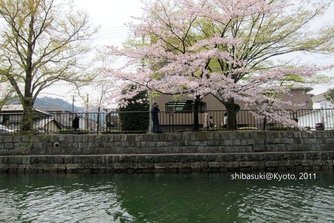 20110411_Kyoto-141_搭十石舟遊岡崎疏水道_1.JPG