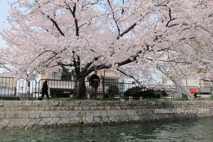 20110411_Kyoto-146_搭十石舟遊岡崎疏水道_1.JPG