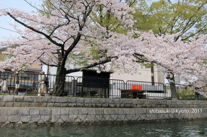 20110411_Kyoto-147_搭十石舟遊岡崎疏水道_1.JPG